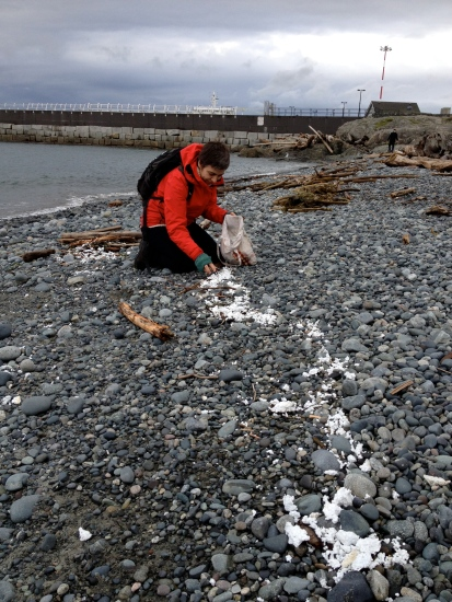 Cleaning polystyrene, 2013, Victoria, Canada.